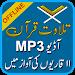Download Holy Quran Audio Mp3 Offline, 11 Qurra Tilawat 1.2 APK