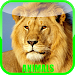 Download Animal Sounds Zoo 1.0.3 APK