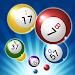 Download Bingo Master King 1.1.0 APK