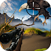 Download Birds Hunting - Sniper Shooting 1.1 APK