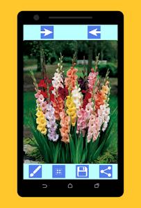 screenshot of Blur Image Background Editor DSLR Effect version 1.1