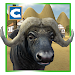 Download Buffalo Wild Bull Simulator 1.1 APK