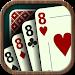 Download Crazy Eights 1.0.4 APK