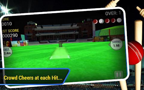 Download Cricket Run Out 3D 1.3 APK