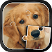 Download Cute Dogs Jigsaw Puzzle 5.1 APK