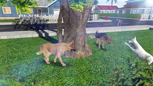 Download Dog Simulator  APK