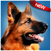 Download Dog Simulator  APK