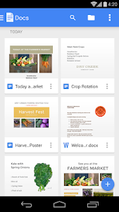 screenshot of Google Docs version