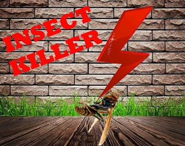 Download Insects Killer Sound Prank : Free 1.0 APK