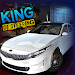 Download King of Steering 3.5.53 APK