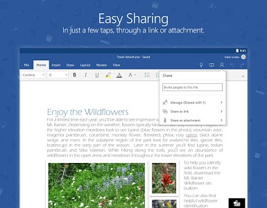 screenshot of Microsoft Word version