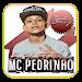 Download Mc Pedrinho a escolhida 2018 2.1 APK