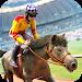 Download ? Racecourse Horses Racing 2.11.4 APK
