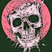 Download Skeleton Skull Art Wallpaper 1.0 APK