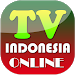 Download TV Indonesia Online 1.0 APK