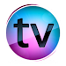 Download TV Online Indonesia HD 2.8.2 APK